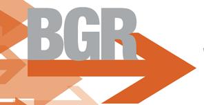 9 Cityemployees Bgrlogo